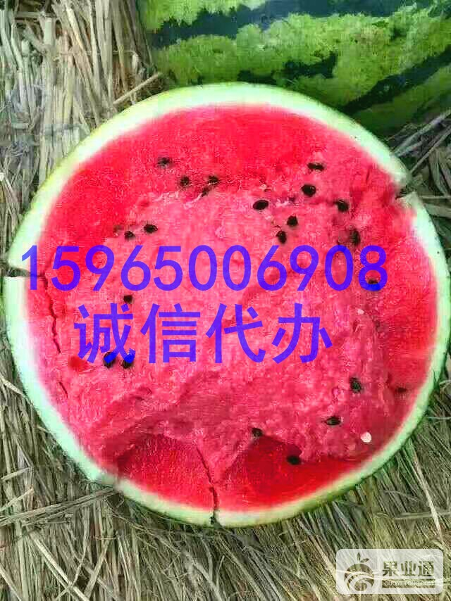 mmexport1494232364343_看图王.jpg