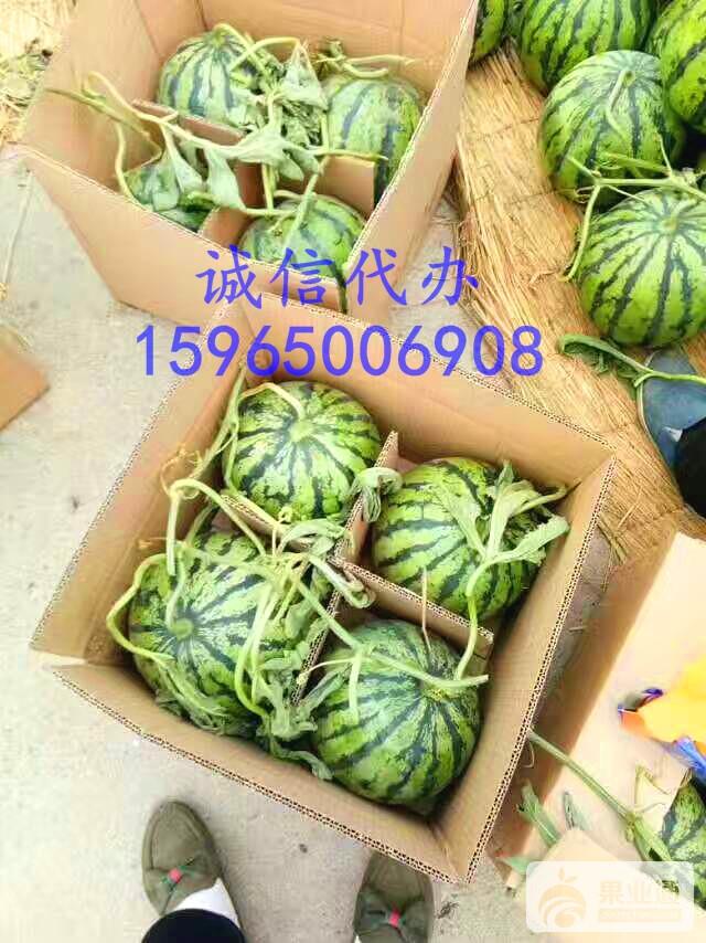 mmexport1494232347832_看图王.jpg