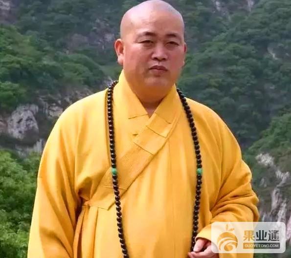 11-少林寺方丈释永信佩戴猴头核桃光珠项串.jpg