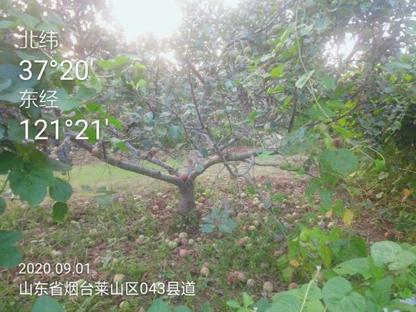 微信图片_20200914164054.jpg