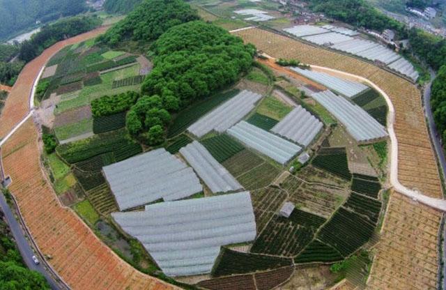 七部门启动农村产业融合发展示范园创建工作