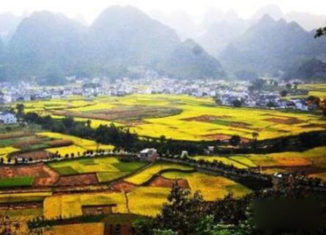 """贵州:打造智慧物流 破解农产品""""进城难"""""""