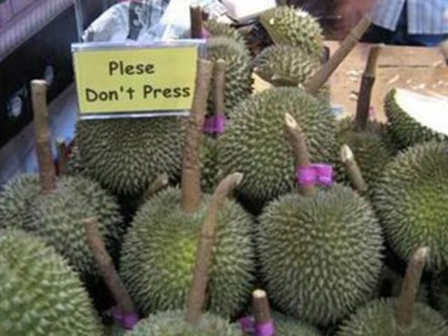 马来西亚:助力榴莲进入中国市场