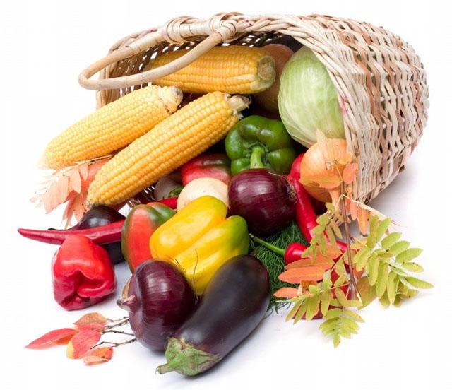 蔬菜生产机械化短板待补