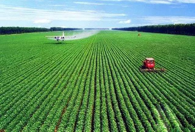 柯炳生:农业如何落实绿色发展理念?