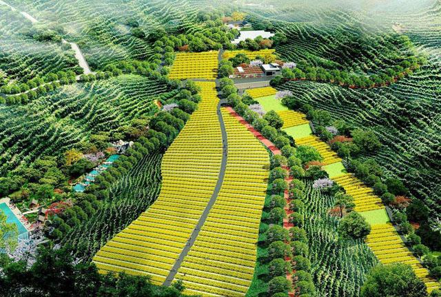 农业绿色发展实现多点突破