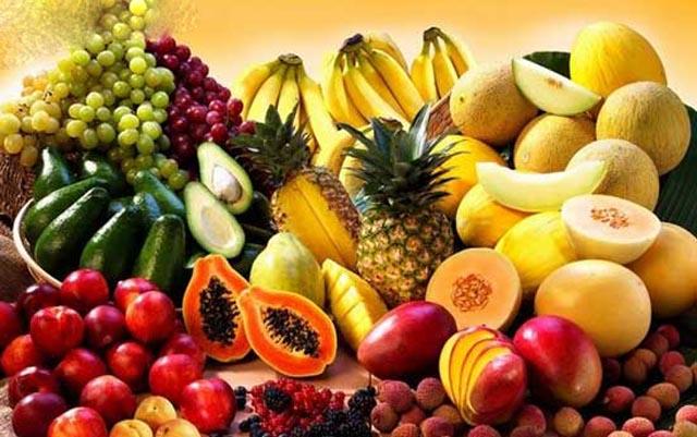 深圳口岸进口水果占全国四成以上