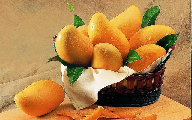 海南三亚:芒果上市 热销开启