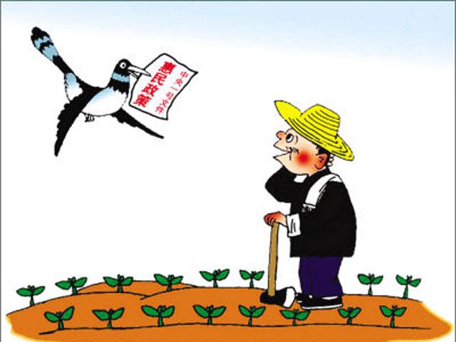 """给农民""""瞧得见""""的实惠"""