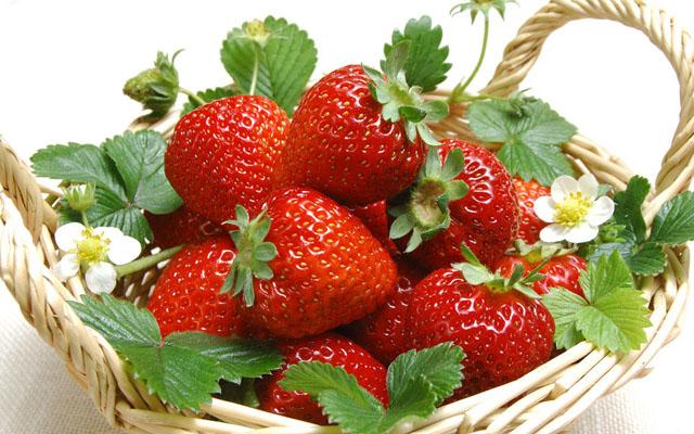 贵州安顺:草莓带动百姓致富