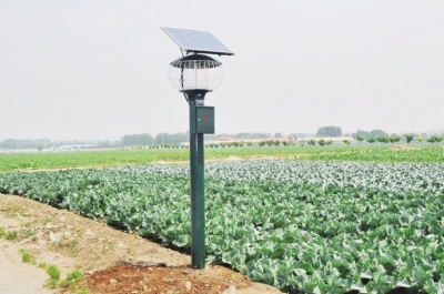 生物防治护航农业绿色发展