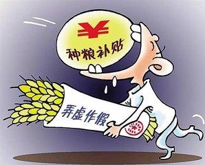 """粮食补贴成""""唐僧肉"""" 一村七干部集体骗补受处分"""