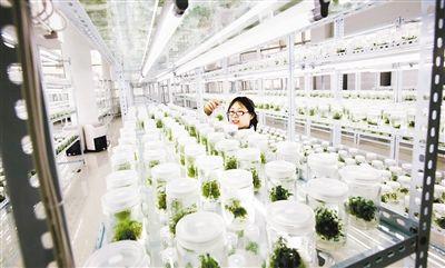 最新报告显示,科技对我国农业农村经济发展的支撑作用显著增强 ...