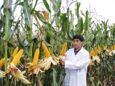 我国农业科技进步贡献率达57.5%
