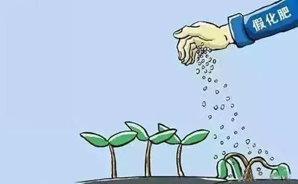 """""""钾肥""""无钾,两万亩土豆大幅减产"""