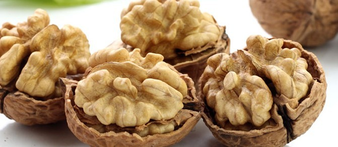 新疆阿克苏:林果产业促发展