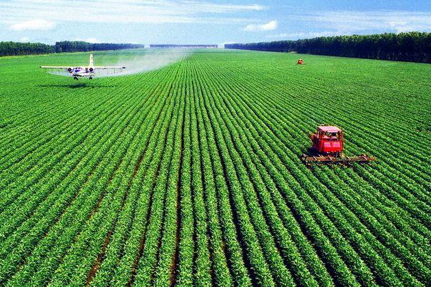 农资企业如何在乡村振兴征程中发展壮大?