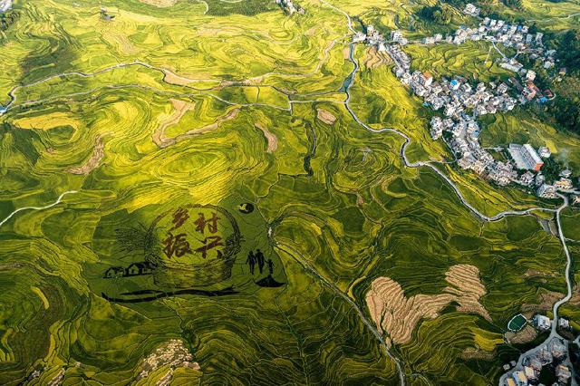 中国农科院启动乡村振兴科技支撑十大行动