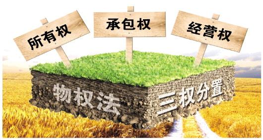 """陈锡文:立法落实农村土地""""三权""""分置积极推进乡村振兴促进法 ..."""