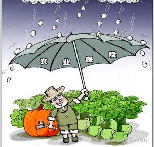 让保险为农业保驾护航
