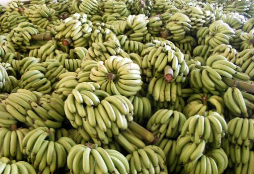 水果交易行情低迷