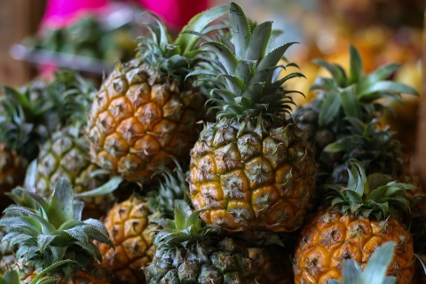 徐闻菠萝价格强势上涨