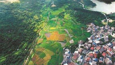 农业农村部公布2020年28个重点农业扶持项目