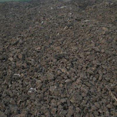 鸡粪、牛粪、猪粪、羊粪,到底哪个更适合当肥料!