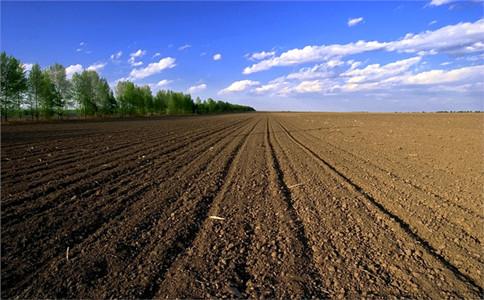"""农村土地归并?9月起""""土地承包""""有变,种地农民注意了!"""