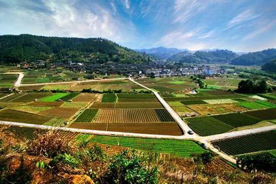 透视农村土地的价值:这两个方向给每个农民一颗定心丸!