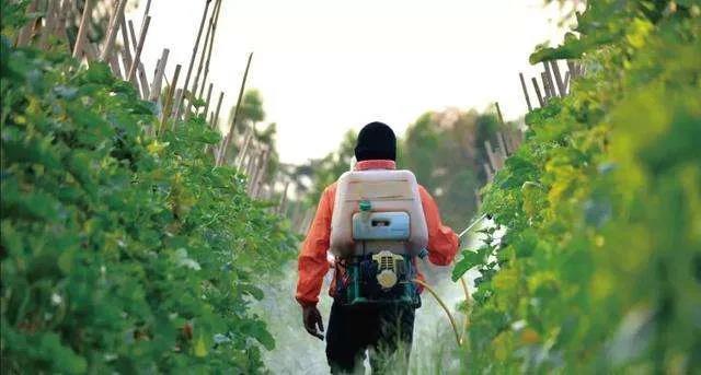 为何生物农药推广应用如此艰难!出路在哪?
