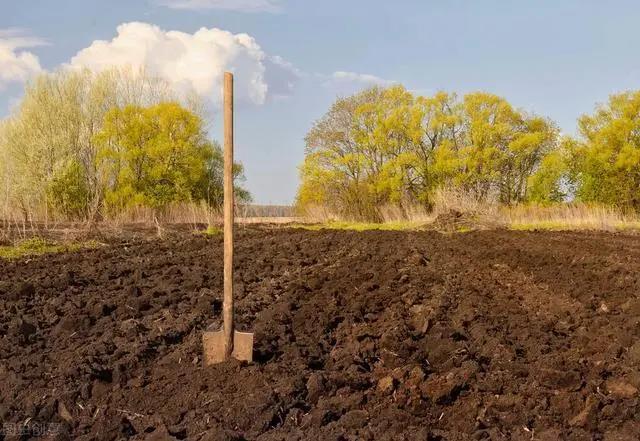 每亩补偿10万元,永久退出土地,你愿意吗?