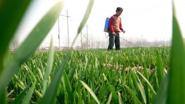 2021年农药行业市场发展趋势预测