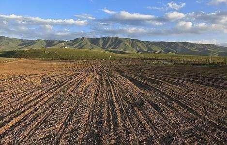 农业农村部:规范土地流转,促进撂荒地规模经营