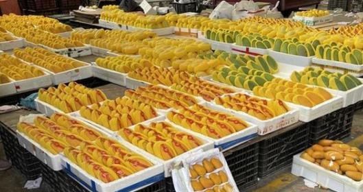 """芒果供应增加 价格小幅""""缩水"""""""