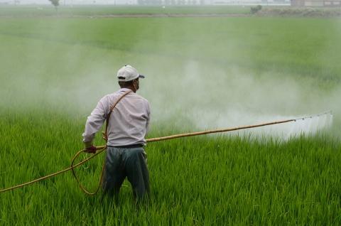新版農殘國標上線,果蔬殘留限量標準超5000項